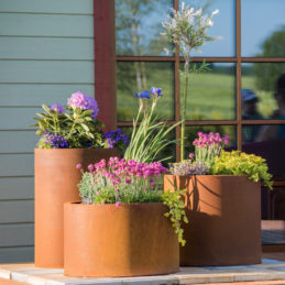 Corten Steel Planter Set Sisters