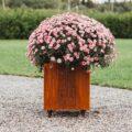 GrillSymbol Cor-Ten Steel Flower Pot Fat Ballerina M